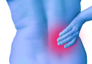 herbal remedy for back pain