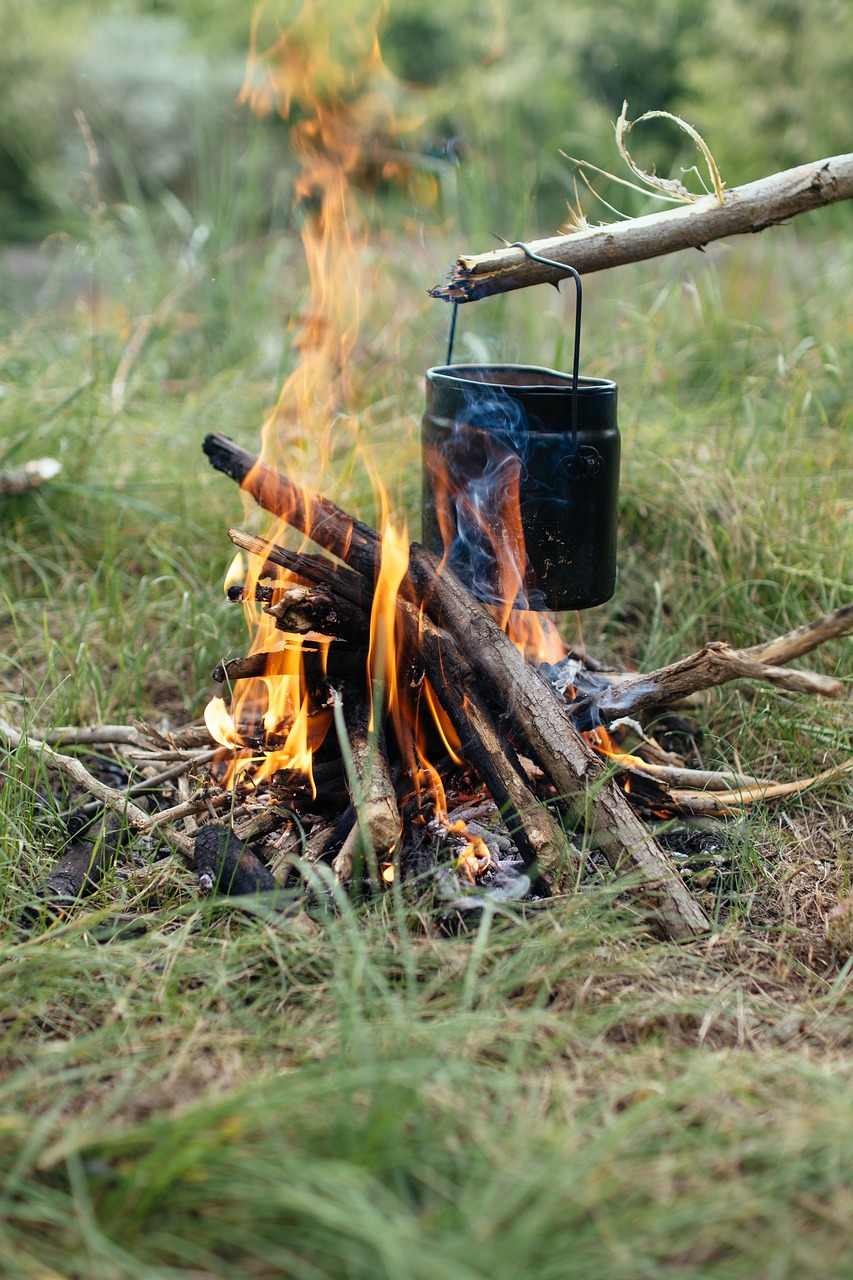 cooking skills for survival