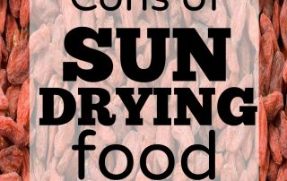 Pros and cons of sun drying to dehydrate food. Some interesting facts here.