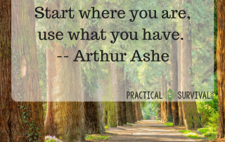 Start where you are, use what you have ~Arthur Ashe
